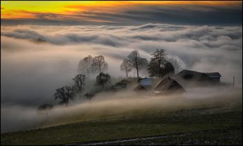 Sonnenuntergang über dem Nebel / Nebelwelle im Naturpark Gantrisch Schweiz