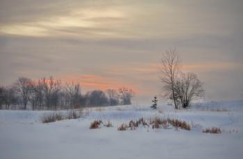 Про сосёнку,вышедшую на берег озера утро встречать... / когда была Зима..,  однако ясно, что зима окончательно от нас отвернулась, поэтому серия воспоминаний о Зиме заканчивается...  Бум жить сегодняшними реалиями...