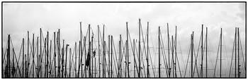 Яхт - клуб / В яхт - клубе мачты в летний день Короткую бросают тень.