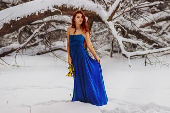 Winter flowers / ...
