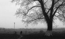 Одиночество / без коментария