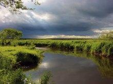 Быть грозе / Поседние личи солнца перед ливнем. Снято в июне 2004 года японской мыльницей на реке Волме окол д. Иваничи(Червенский р-н) 79,5 км от МКАД