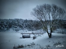зимний пейзажец / речушка и лес