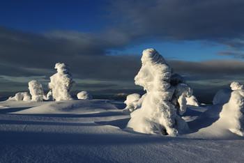 Солнечные мечты... / Кандалакша 2020... Всего неделя остаётся до моего большого автопутешествия на Север Норвегии.... А потом... Потом много чего ещё.  Напоминаю про Итуруп в начале августа. Идёт активный набор. Мест остаётся не много... Подробности туров смотрите на сайте http://phototourtravel.ru/anons