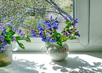 желание весны / с наступающим праздником !