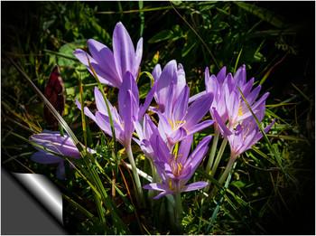 """С Днем 8 Марта! / Всех девушек, женщин и фотографинь поздравляю с самым добрым и красивым весенним праздником!  Желаю удачи, любви, благополучия, света в глазах, добра в сердце, счастья от тепла близких людей, увлекательной Весны, интересных взглядов на природу и жизнь!  """"Ты у меня одна, Словно в ночи луна, Словно в году весна, Словно в степи сосна. Hету другой такой Ни за какой рекой, Hи за туманами, Дальними странами.  В инее провода, В сумерках города. Вот и взошла звезда, Чтобы светить всегда, Чтобы гореть в метель, Чтобы стелить постель, Чтобы качать всю ночь У колыбели дочь.  Вот поворот какой Делается с рекой. Можешь отнять покой, Можешь махнуть рукой, Можешь отдать долги, Можешь любить других, Можешь совсем уйти, Только свети, свети!""""  Юрий Визбор"""