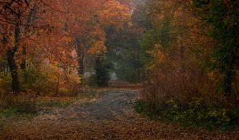 Лето встречается с осенью / октябрь