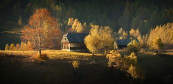 Как и сто лет назад / Карпаты, Румыния, осень