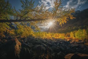Долина Актру / Алтай