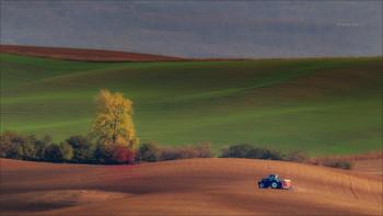 Wavy autumn fields / Полевые работы,Южная-Моравия осень 2019.   Canon 1D Mark IV, Tamron SP 150-600mm f/5-6.3 Di VC USD G2, 1/400 , f/8.0, ISO 320, штатив.