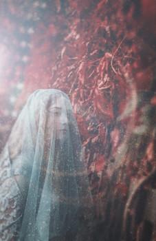 Гера / Гера (греч.) – старшая дочь Крона и Реи, сестра и жена Зевса, покровительница брака