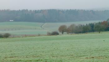 Первые заморозки / Начало зимы . Пейзаж .
