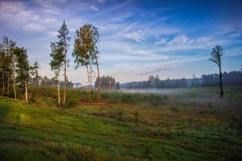 Утро в августе / Пейзаж Беларуси