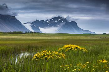 Июнь / Лето на юге Исландии