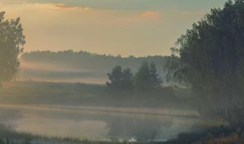 Про утро, на опушке леса.. / из летнего...