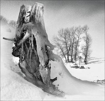 """""""Жизнь после жизни"""" / В Темляках перед въездом на мост стоит сохранившийся монумент - ПЕНЬ, являя собой величие старых огромных тополей..."""