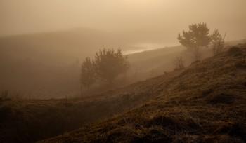 / Утро, туман