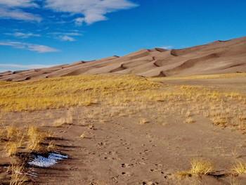 дюны / Great Sand Dunes National Park, Colorado, USA