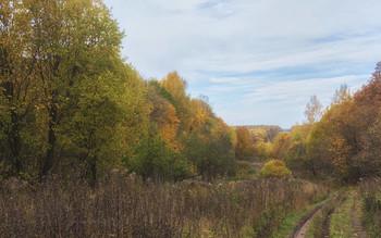 Дорога в осень / осенние пейзажи