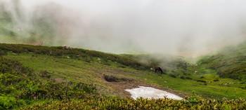 Утро в горах / В горах Красной поляны  http://www.youtube.com/watch?v=JUJpuyTBIvs
