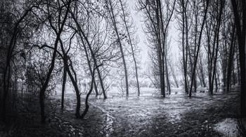 То плачут берёзы... / Памяти погибших в Одессе 2 мая 2014...  http://www.youtube.com/watch?v=5-fAv71Kzyg