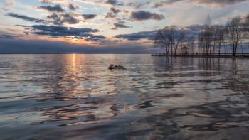 28 апреля / Плещеево озеро, апрель,весна