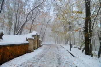 Туманным утром....... / Железноводск. Ноябрь
