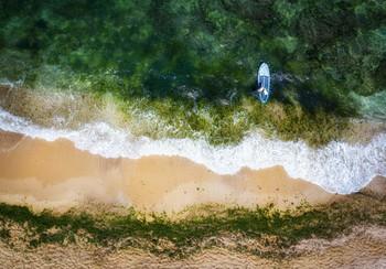 Surfing start / 2020