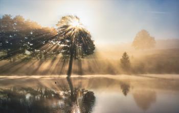 Солнечный душ. / Рассвет на озере.
