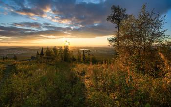 Утренний свет / Осеннее утро на Урале