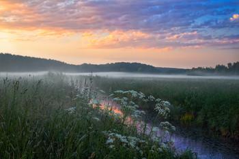 Рассвет в начале лета / Пейзаж Беларуси