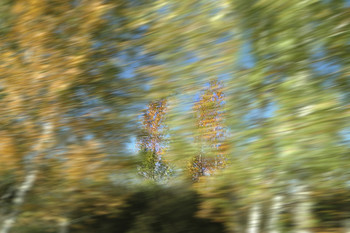 Пейзаж на скорости в окне машины / Пейзаж на скорости в окне машины