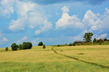 """""""Воздух Родины - он особенный, не надышешься им..."""" / Лето в деревне ..."""