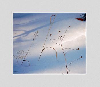 Зимний танец / В солнечный денёк...