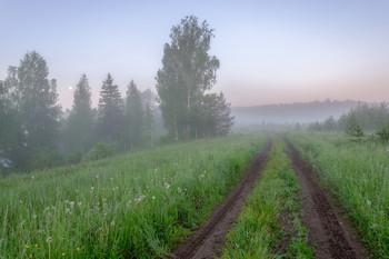 "Туманное утро июня. / Туманное утро в природном заказнике ""Пижемский""."