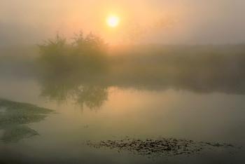 Туман,река,рассвет,солнце... / ***