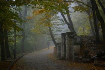 Дождливое утро...... / Железноводск. Октябрь