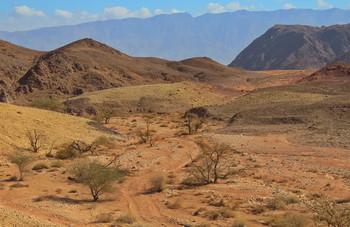 Пустыня Арава / Пустыня Арава