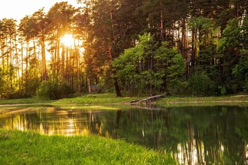 / озеро Светлое лебяжье,Татарстан