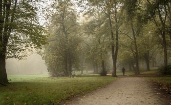 Гуляя / По парку