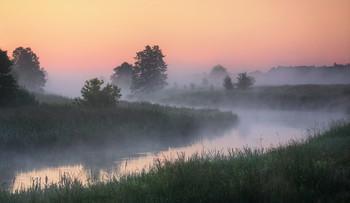 Летнее утро / Предрассветная река
