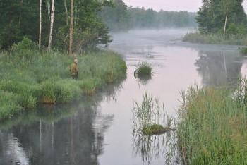 / Утренний туман