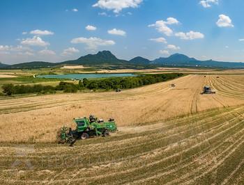 Уборка пшеницы на Ставрополье / Горячая пора, сбор урожая, было +35 в тени. Работа комбайнов на фоне гор Кавминвод (Развал, Железная и Бештау). Несколько лет пытались поймать момент уборки пшеницы на фоне гор, именно в этой области (в соответствии с композициями зелёная лесополоса, озеро в среднем плане и на горизонте, живописная группа Пятигорья). Начало июля 2020 года. Предгорный район. Фотопроект «Открывая Ставрополье».