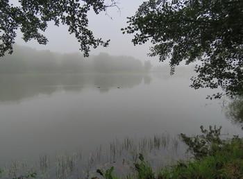 Утро / Утренний туман