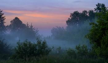 Утренний пейзаж. / Туман на рассвете в полях Мещеры.