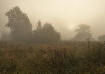 """Утро раннее. Туман. Близость осени..."" / ""Утро раннее. Туман.  Близость осени. Прохлада.  Зелень красок - сарафан.  Как тебе я, август, рада!""  Е.Ярина"