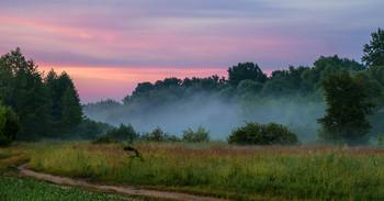 Под туманом ручей. / Ручей под названием Палец соединяет два озера: Сосновое и Исток. Мещера, юго-восток Московской области.