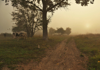 Утро в деревне ... / деревня