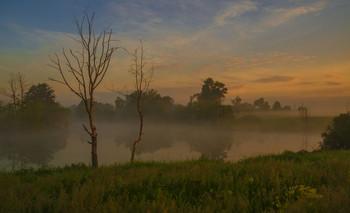 Рассвет на Омуте. / Утреннее озеро в полях Мещеры.