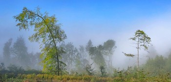 Уходи туман, уходи.. / Хорошее утро в горах